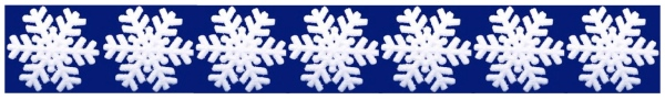 New MWC snowflake banner